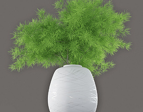 Asparagus 3D model lsa