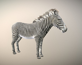 3D model realtime Zebra Animated Low Poly