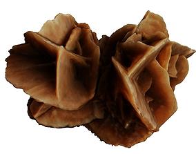 Desert stone rose 3D model