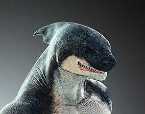 3D asset Anthro Shark