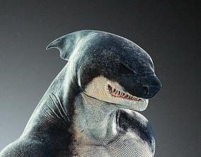 Anthro Shark 3D asset