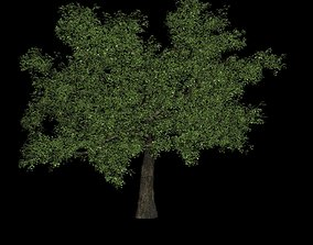 3D Tree green high poly flower
