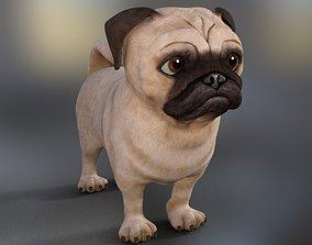 puppy Pug Model 3d