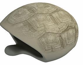Tortoise Shell Skeleton 3D asset