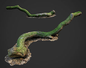 3d scanned nature forest stuff 003 low-poly