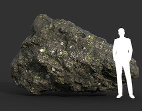 3D asset Low poly Damaged Lichen Rock 01 190907