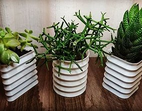 plants Geometric Vase 3D printable model