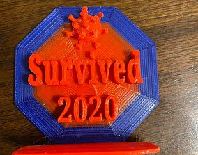 I survived 2020 3D print model