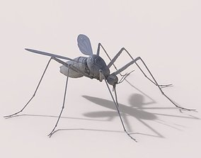 Mosquito 3D Model nature