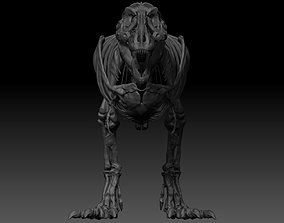 3D model Adult Tyrannosaurus Rex Complete Skeletons - 2
