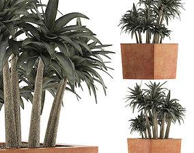 3D model Plants Collection 84