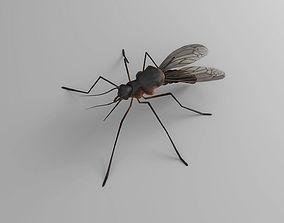 Mosquito 3D