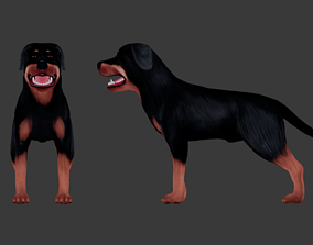 Rottweiler 3D model animated game-ready