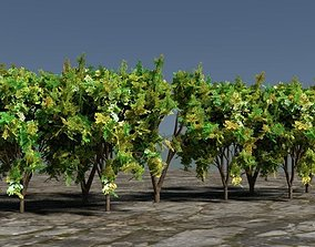 3D model Realistic Trees for Game Assets or Fields for