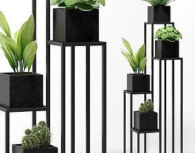 PLANTS 238 3D