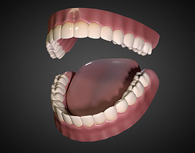 Teeth - Mouth Interior 3D