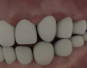 3D asset Human teeth and tongue