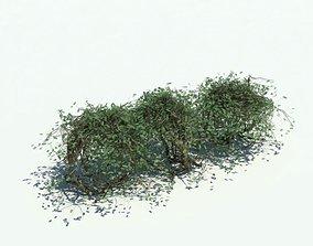 3D model Shrubbery Hedge