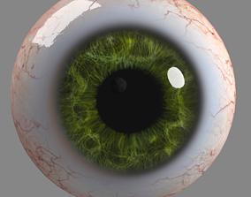 Eyeball human 3D model