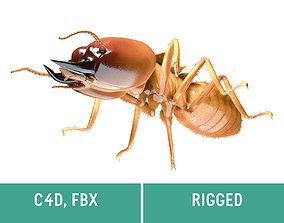 3D asset Termite - Soldier