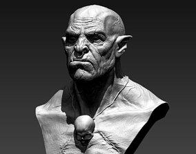 Orc Bust 3D print model