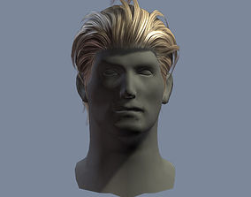 hair man 5 3D asset