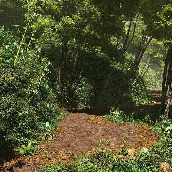 Path forest
