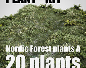 3D asset game-ready nordic forest plants A collection