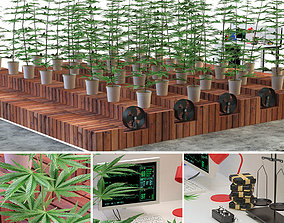 mj 3D Laboratory marijuana set