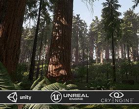 3D model Redwood Forest