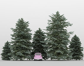 Fir Tree Pack 01 3D