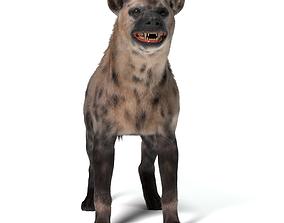 hyena 3D Hyena For Production
