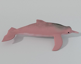 3D model Pink Dolphin