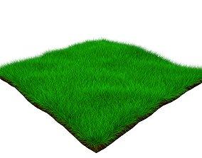 forest seedling 3D model Grass