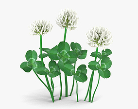 3D Clover decoration