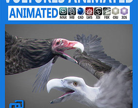 Animated Vultures 3D