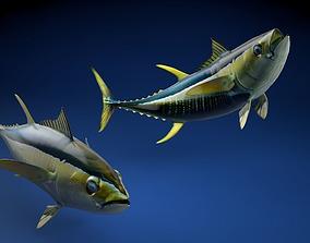 Yellowfin Tuna Fish 3D asset