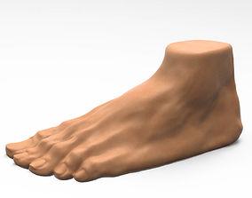 3D Foot human