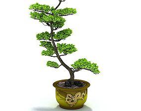3D Green Potted Plant leaf