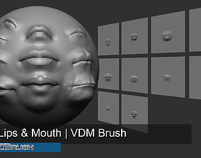 3D face 10 Lips and Mouth - Zbrush VDM Brush