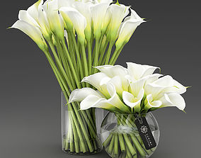 3D model Two vases with Calla lilies
