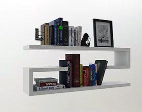 literature Shelf with books 3D