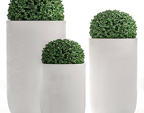 3D Ornamental bushes in flowerpots for parks and garden