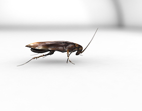 unity cockroach 3D model animated
