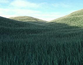 Grass Low Poly 4 3D asset