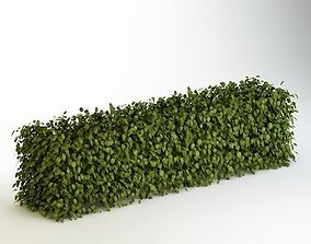 3D Bush 04 terrain