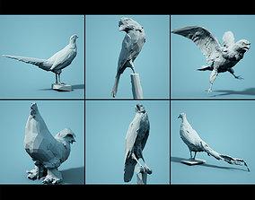 3D asset Bird Collection V2 Low Poly Models