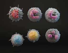 eosinophil White Blood Cells 3D