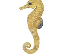 animated Seahorse 3D Print Model