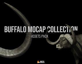 Buffalo Mocap Collection 3D model